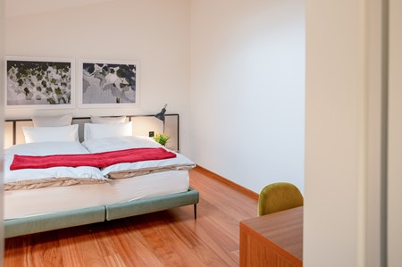 Gallery_Double_Eco_Bigatt_Hotel_and_Restaurant_Lugano_11.jpg